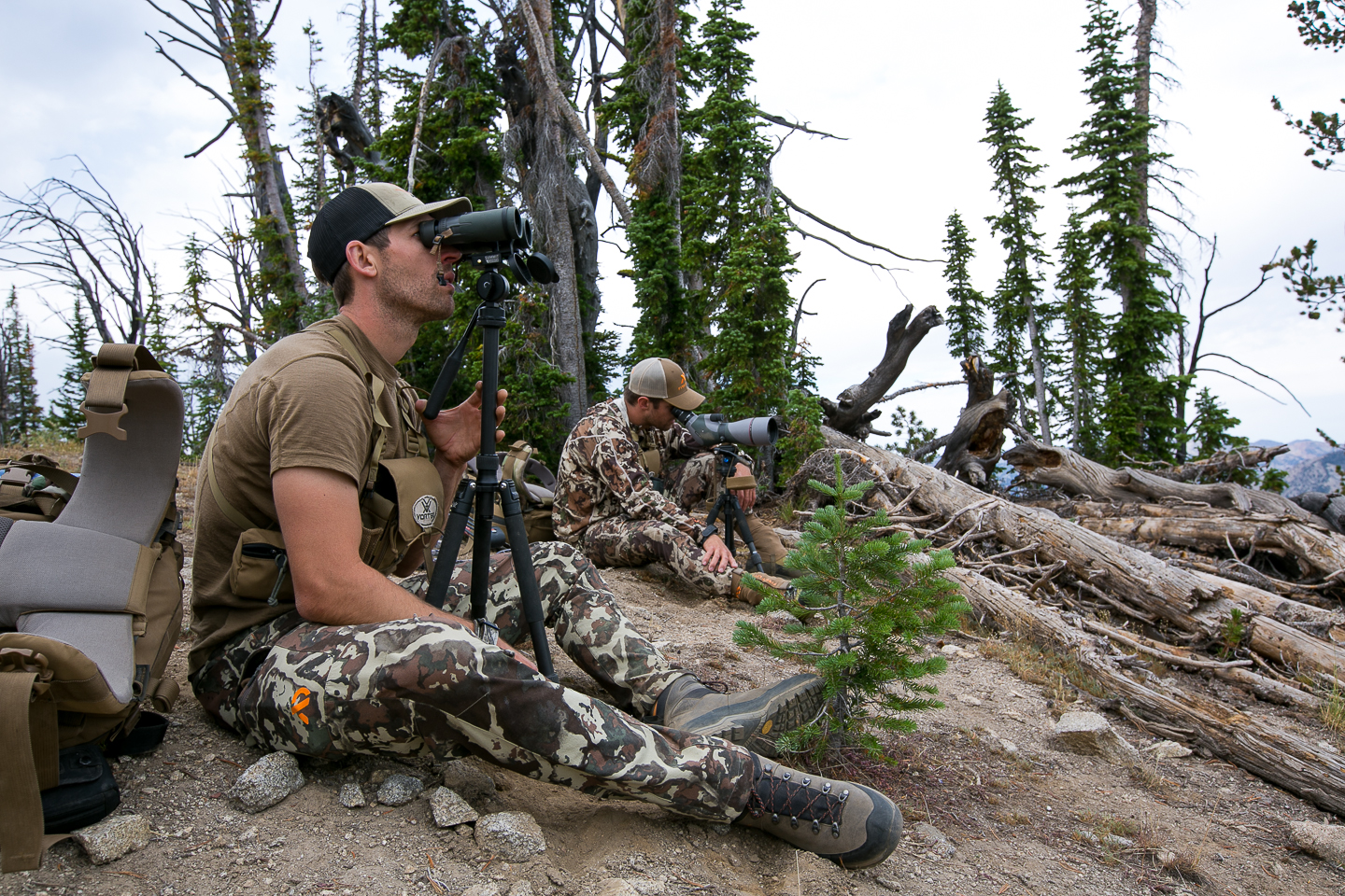 glassing for mule deer