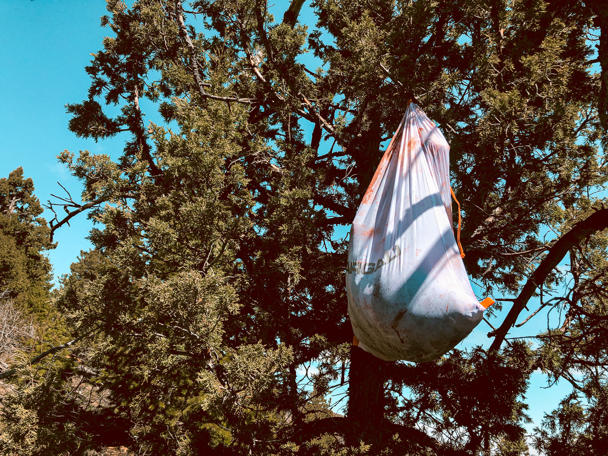 Argali game bag filled with bear meat and hanging in a tree from Jaden Bales's recent spring bear hunt in wyoming