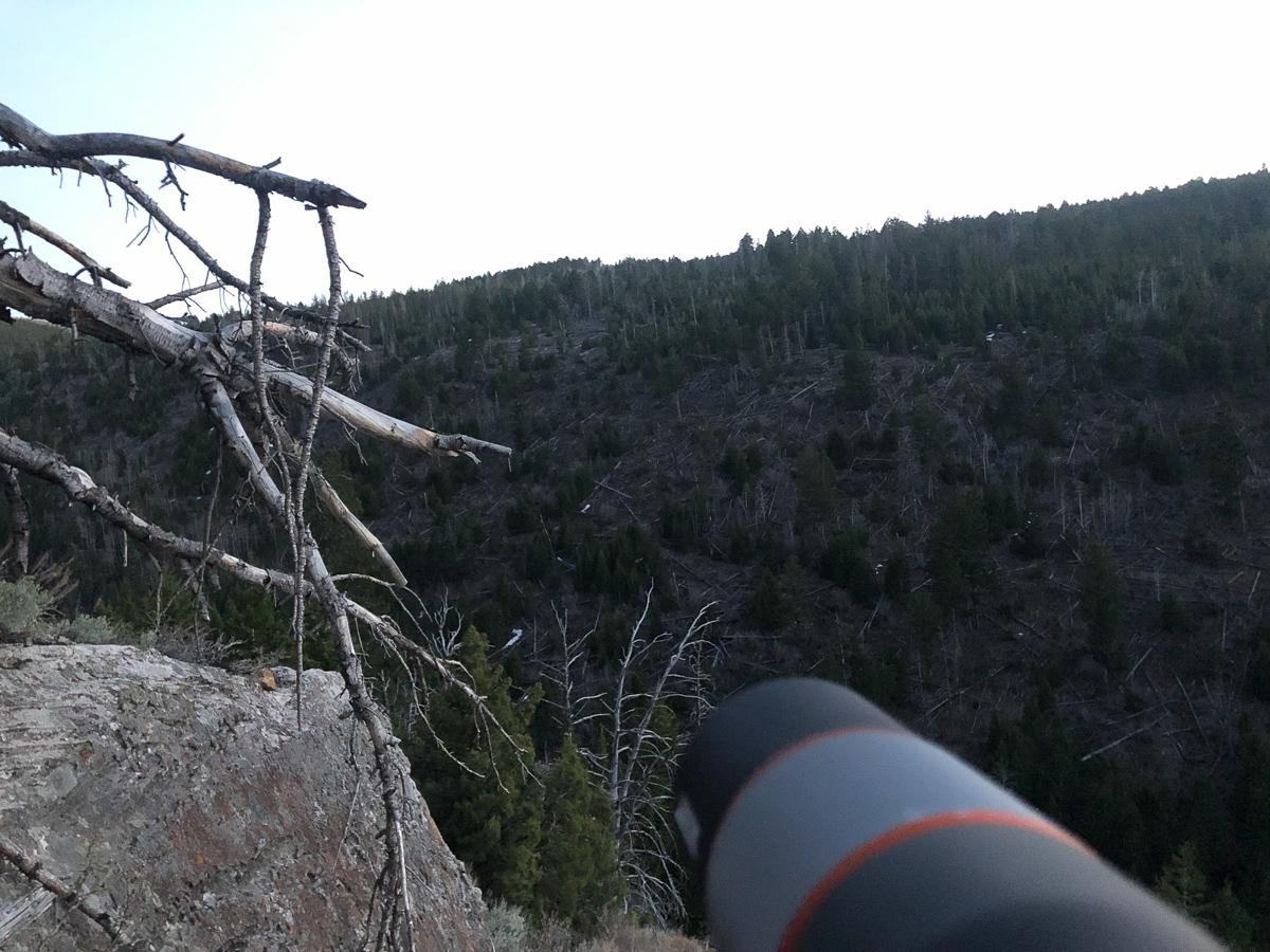 Spotting scope in Wyoming bear country