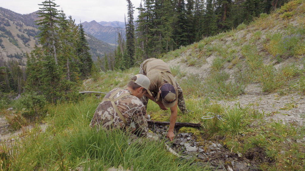 filtering water backcountry mule deer hunting