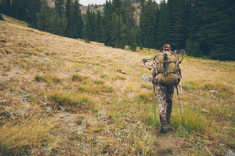 Packing out a mule deer buck in early archery season